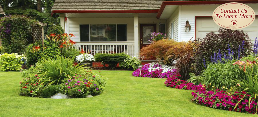 Landscape design maintenance professional native for Beautiful landscape design